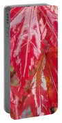 Red Leaf Abstract Portable Battery Charger