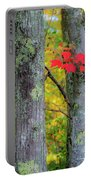 Red Leaves Portable Battery Charger by Gary Lengyel