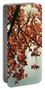 Red Life Portable Battery Charger