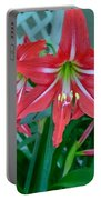 Red Lilies Portable Battery Charger
