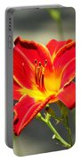 Red Lilly Portable Battery Charger