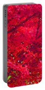 Red Maple 2 Version 1 Portable Battery Charger