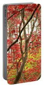 Red Maple Leaves And Branches Portable Battery Charger