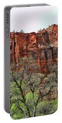 Red Mountains Zion National Park Usa Portable Battery Charger