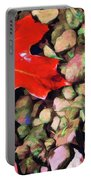 Red On The Rocks Portable Battery Charger
