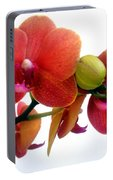 Red Orchid Flowers 02 Portable Battery Charger