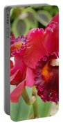 Red Orchid Portable Battery Charger