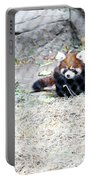 Red Panda Cub Portable Battery Charger