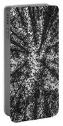 Red Pine Tree Tops In Black And White Portable Battery Charger