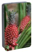 Red Pineapples Portable Battery Charger
