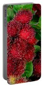 Red Rambutan And Green Leaves Portable Battery Charger