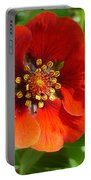 Red Red Bloom Portable Battery Charger