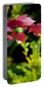 Red Red Maple Leaves Portable Battery Charger