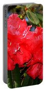 Red Rhodie Portable Battery Charger