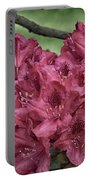 Red Rhodies Portable Battery Charger