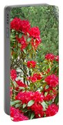 Red Rhododendron Garden Art Prints Rhodies Landscape Baslee Troutman Portable Battery Charger