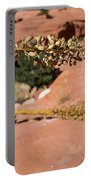 Red Rock Canyon Nv 11 Portable Battery Charger