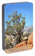Red Rock Canyon Nv 4 Portable Battery Charger
