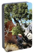 Red Rock Canyon Nv 5 Portable Battery Charger