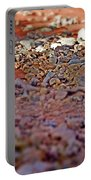 Red Rock Canyon Stones 1 Portable Battery Charger