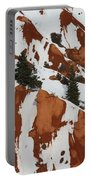 Red Rock Greenery Portable Battery Charger