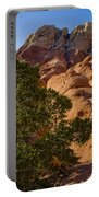 Red Rock Textures Portable Battery Charger