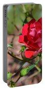 Red Rose And Buds Portable Battery Charger