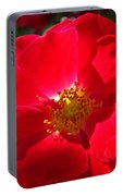 Red Rose Art Print Sunlit Roses Botanical Giclee Baslee Troutman Portable Battery Charger