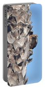 Red Shouldered Hawk On Palm Tree Portable Battery Charger
