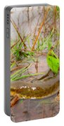Red Spotted Newt Portable Battery Charger