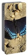 Red Spotted Purple Astyanax Portable Battery Charger