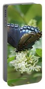 Red-spotted Purple Butterfly On Privet Flowers Portable Battery Charger