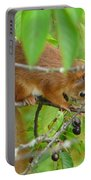 Red Squirrel In The Cherry Tree Portable Battery Charger