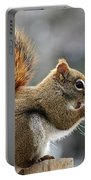 Red Squirrel On Wooden Fence II Portable Battery Charger