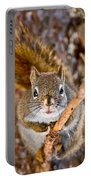 Red Squirrel Pictures 144 Portable Battery Charger