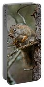 Red Squirrel Pictures 161 Portable Battery Charger