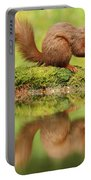 Red Squirrel Reflection Portable Battery Charger