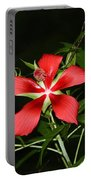 Red Swamp Hibiscus Portable Battery Charger