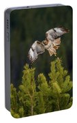 Red-tail Flight At Sunset Portable Battery Charger