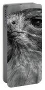 Red-tailed Hawk 2 Portable Battery Charger