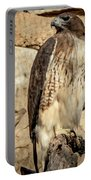 Red-tailed Hawk 4 Portable Battery Charger
