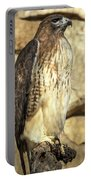 Red-tailed Hawk 5 Portable Battery Charger
