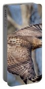 Red Tailed Hawk Flying Portable Battery Charger