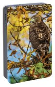 Red-tailed Hawk In Fall Color Portable Battery Charger