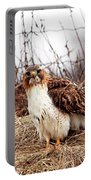 Red Tailed Hawk In The Field Portable Battery Charger