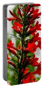 Red Texas Plume Flowers Portable Battery Charger