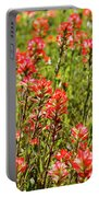 Red Texas Wildflowers Portable Battery Charger