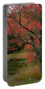 Red Tree II Portable Battery Charger by Gary Lengyel