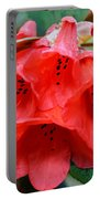 Red Trumpet Rhodies Portable Battery Charger