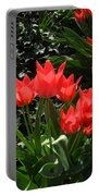 Red Tulips Portable Battery Charger